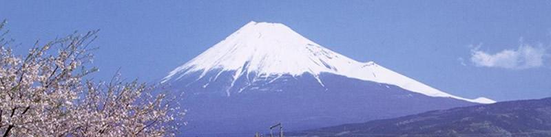 japaner1.jpg