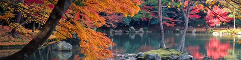 japaner3.jpg